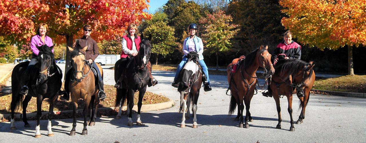 Mason Dixon Paso Fino Horse Association